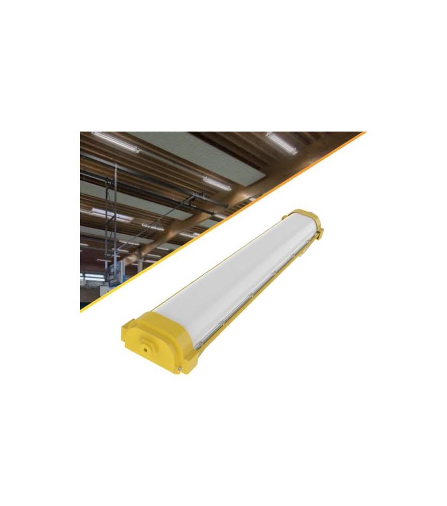 Lineal Atex